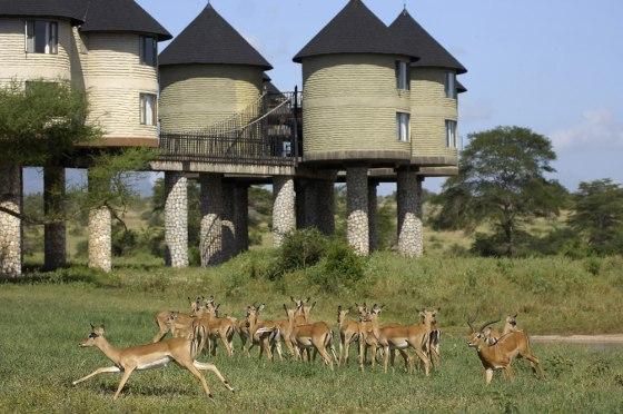 Sarova hotel Tsavo Keňa
